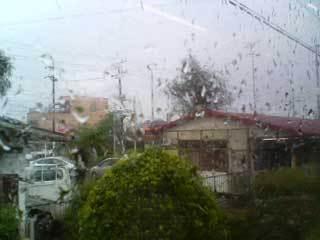 Chiba_taifuu